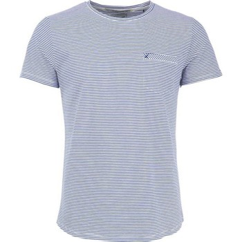 Textiel Heren T-shirts korte mouwen No Excess T-shirt s/sl, r-neck, yd stripe str navy Blauw