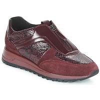 Schoenen Dames Lage sneakers Geox D TABELYA Bordeau