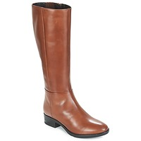 Schoenen Dames Hoge laarzen Geox D FELICITY Bruin