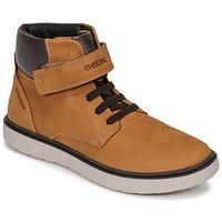 Schoenen Jongens Hoge sneakers Geox J RIDDOCK BOY WPF Bruin