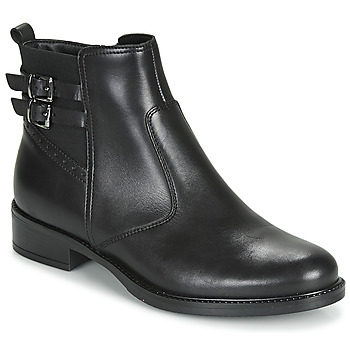 Schoenen Dames Laarzen André CARLIN Zwart