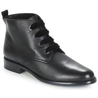 Schoenen Dames Laarzen André THAO Zwart