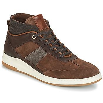 Schoenen Heren Hoge sneakers André GLASGOW Bruin