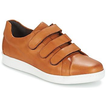 Schoenen Heren Lage sneakers André AVENUE Bruin