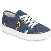 Schoenen Meisjes Lage sneakers André PLUMETTE Jeans