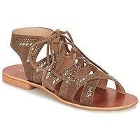 Schoenen Dames Sandalen / Open schoenen André MAUPITI Bruin