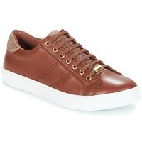 Schoenen Dames Lage sneakers André BERKELEY Cognac