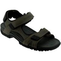 Schoenen Heren Sandalen / Open schoenen Mephisto BRICE Taupe leer