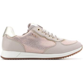 Schoenen Meisjes Lage sneakers Geox J Jensea G.D J826FD 007BC C8617 beige, gold