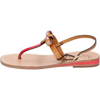 Schoenen Dames Sandalen / Open schoenen Eddy Daniele Sandalen AX766 ,