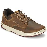 Schoenen Heren Lage sneakers Caterpillar COLFAX Bruin