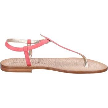 Schoenen Dames Sandalen / Open schoenen Eddy Daniele Sandalen AX914 ,