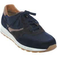 Schoenen Heren Lage sneakers Mephisto Telvin Marineblauw leer