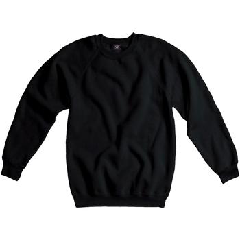Textiel Heren Sweaters / Sweatshirts Sg Raglan Zwart