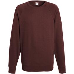 Textiel Heren Sweaters / Sweatshirts Fruit Of The Loom 62138 Bordeaux
