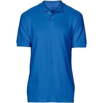 Textiel Heren Polo's korte mouwen Gildan 64800 Koninklijk