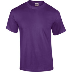 Textiel Heren T-shirts korte mouwen Gildan Ultra Paars