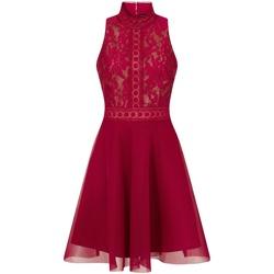 Textiel Dames Korte jurken Little Mistress  Bes