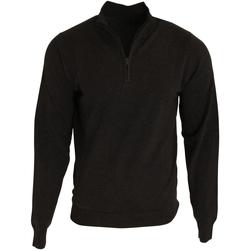Textiel Heren Truien Premier PR695 Zwart