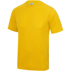 Textiel Heren T-shirts korte mouwen Awdis JC001 Goud