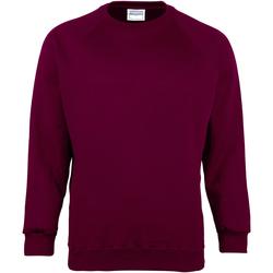 Textiel Heren Sweaters / Sweatshirts Maddins MD01M Bourgondië