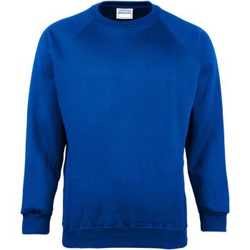 Textiel Heren Sweaters / Sweatshirts Maddins MD01M Koninklijk