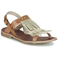 Schoenen Meisjes Sandalen / Open schoenen GBB ACARO Bruin / Goud