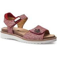Schoenen Dames Sandalen / Open schoenen Calzamedi SANDALEN  EURIA RED