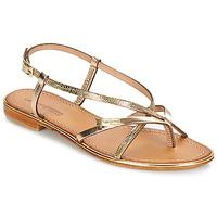 Schoenen Dames Sandalen / Open schoenen Les Tropéziennes par M Belarbi MONACO Goud / Slang