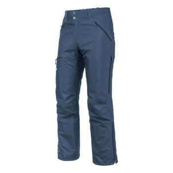 Textiel Heren Broeken / Pantalons Salewa Sesvenna Ws Lrr M Pnt 25820-8671 blue