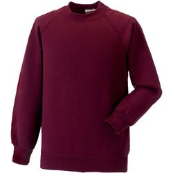 Textiel Kinderen Sweaters / Sweatshirts Jerzees Schoolgear 7620B Bourgondië