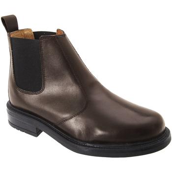 Schoenen Heren Laarzen Roamers  Bruin