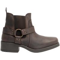 Schoenen Heren Laarzen Woodland  Bruin