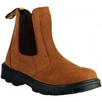 Schoenen Heren Laarzen Amblers FS131 SAFETY Bruin