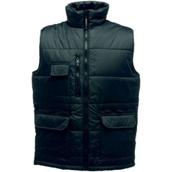Textiel Heren Dons gevoerde jassen Regatta Steller Zwart