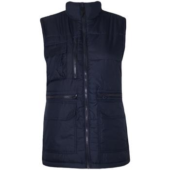 Textiel Heren Dons gevoerde jassen Regatta Steller Marine