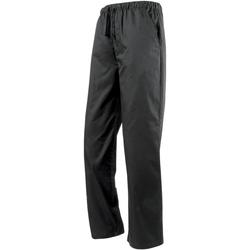 Textiel Trainingsbroeken Premier PR553 Zwart