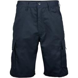 Textiel Heren Korte broeken / Bermuda's Rty Workwear RT031 Marine