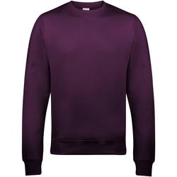 Textiel Heren Sweaters / Sweatshirts Awdis JH030 Pruim