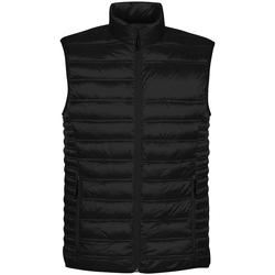 Textiel Heren Dons gevoerde jassen Stormtech ST158 Zwart
