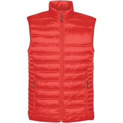 Textiel Heren Dons gevoerde jassen Stormtech ST158 Rood
