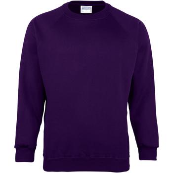 Textiel Kinderen Sweaters / Sweatshirts Maddins MD01B Paars