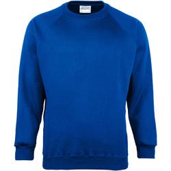 Textiel Kinderen Sweaters / Sweatshirts Maddins MD01B Koninklijk